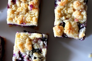 blueberry crumb bars from The Smitten Kitchen