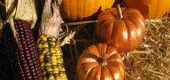 Gilded-Pumpkins-2